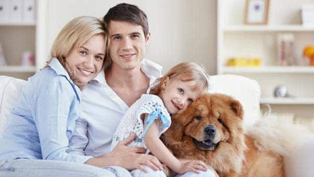 Wills & Trusts dog-young-family Direct Wills Butterwick